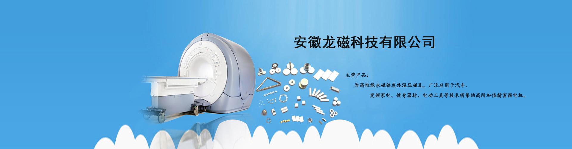 安徽龙磁科技有限公司-banner
