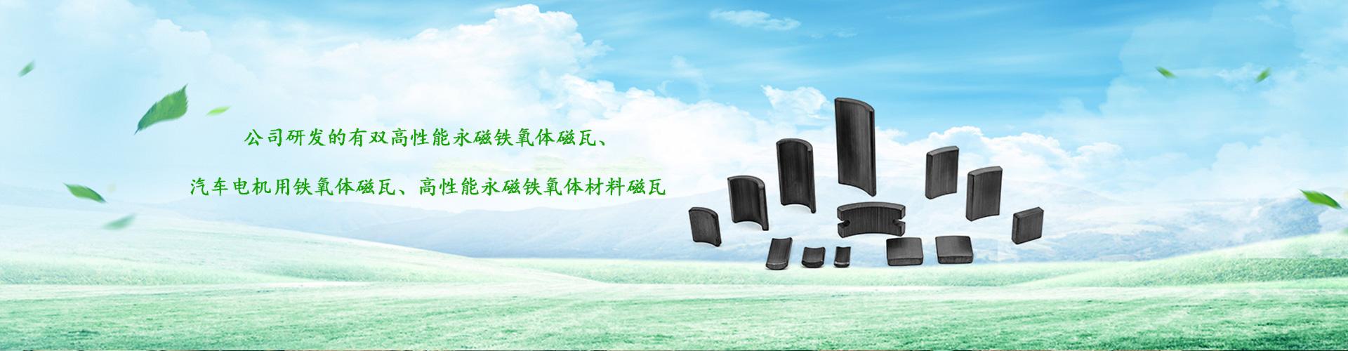安徽龙磁科技有限公司-banner2